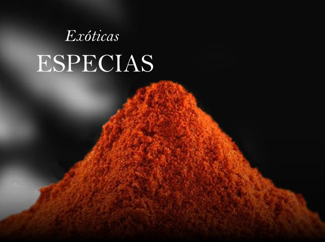 Especias Bronze & Mora aceite para regalar regalo gourmet oleoteca Madrid